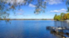 lake-summer.jpeg