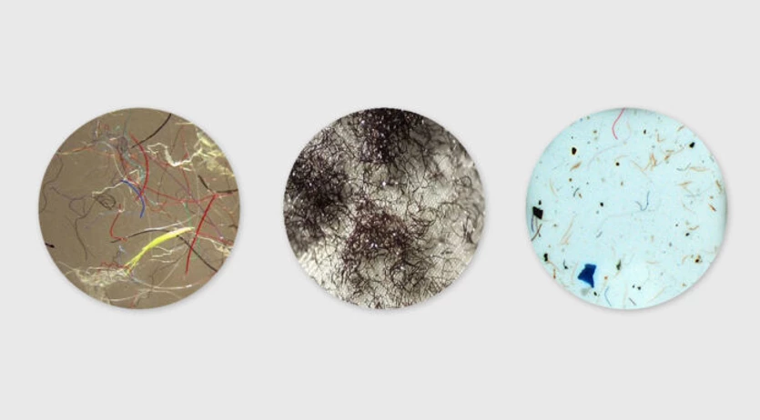 [Microscopic views of microfibers. Photos: Bren School of Environmental Science and Management at UCSB. via Patagonia: https://www.patagonia.com/stories/what-do-we-know-about-tiny-plastic-fibers-in-the-ocean/story-30357.html]