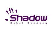 shadow-500x340.jpg