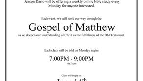 Zoom Summer Bible Study!