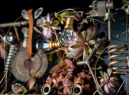 International Floral Art частина 2