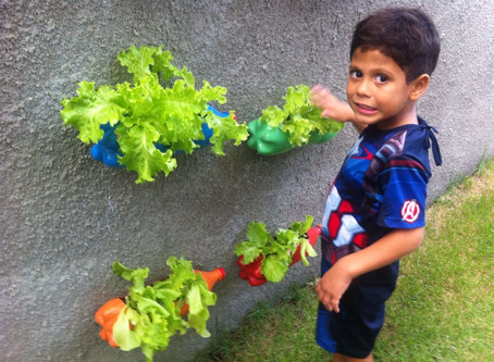 Os 3 desafios da educação ambiental