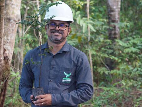 Como transformar seu projeto de reflorestamento em algo de valor para a empresa e pessoas.