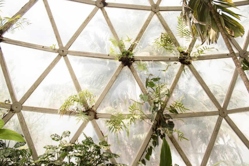Glasstruktur für die Struktur des 4-Kontensystems.