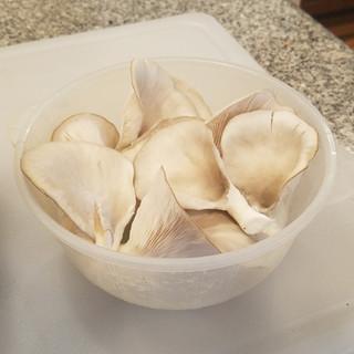 1 quart bowl, less than half of the first flush.