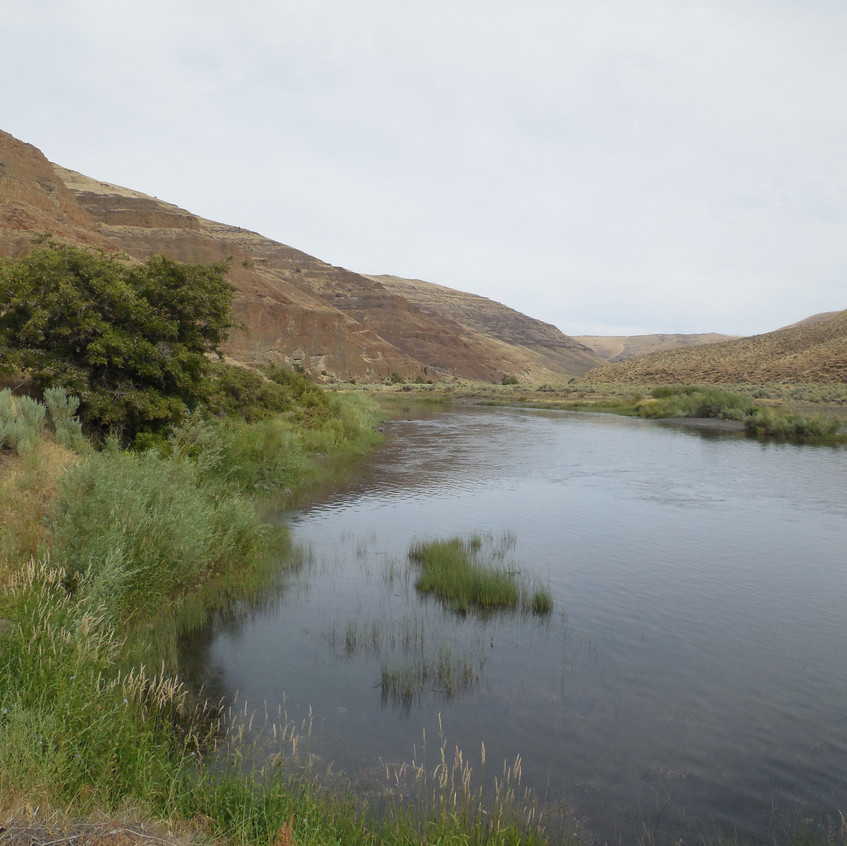 The John Day River