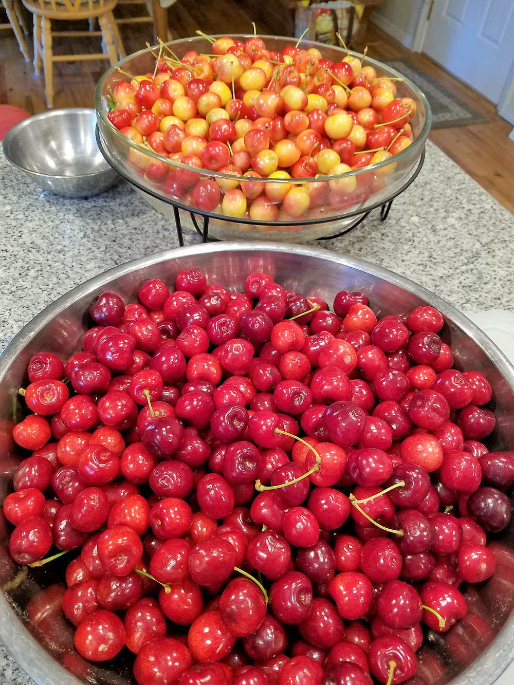 Fresh Rainier and Bing Cherries