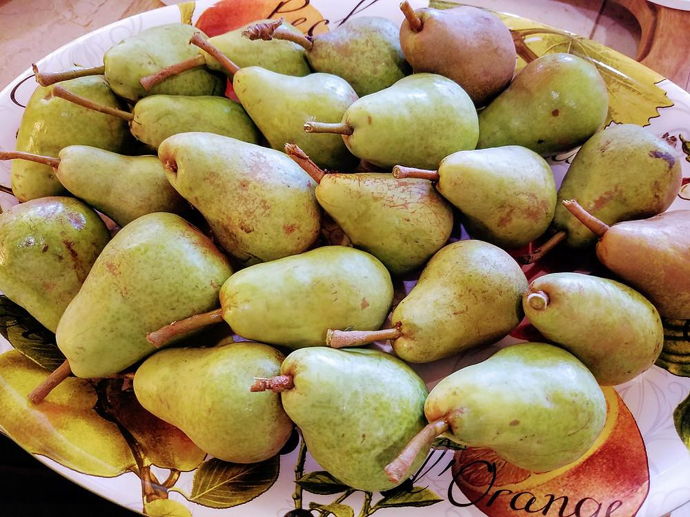 Home Grown Bartlett Pears