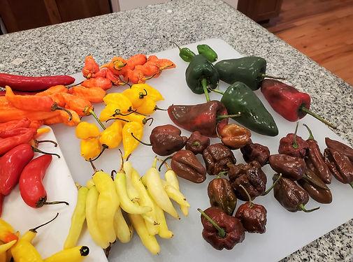 Hot Pepper Chili Paste