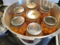 Canned Rainier Cherries