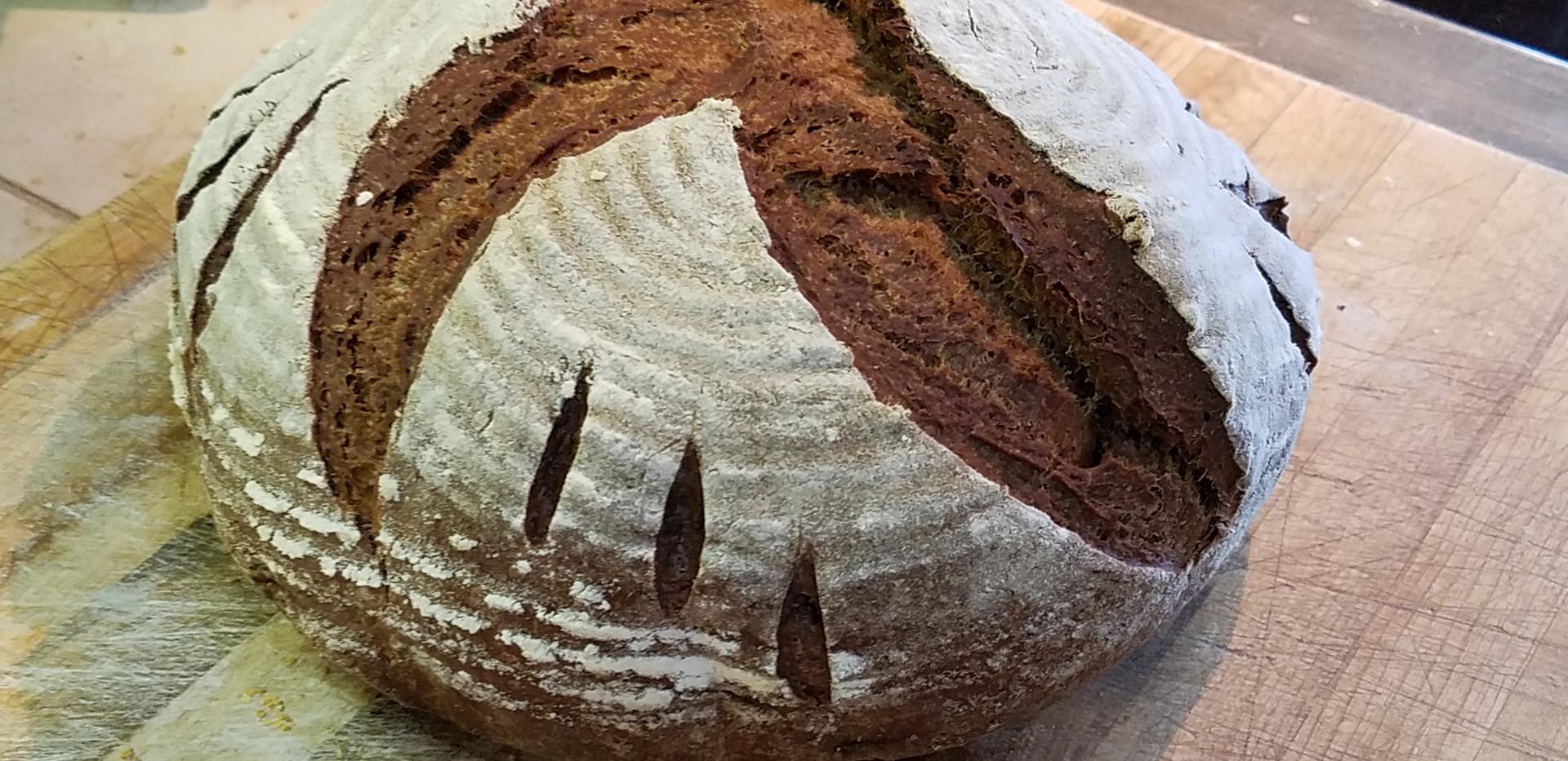 Chocolate Rye Sourdough