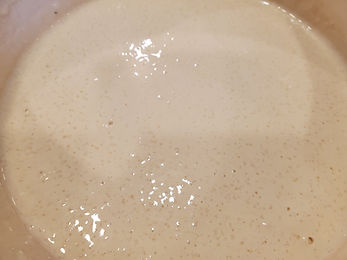 Care and Keeping of Sourdough Starter