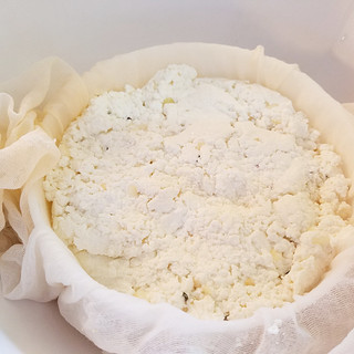 Place the curds in cheese cloth into a mold.