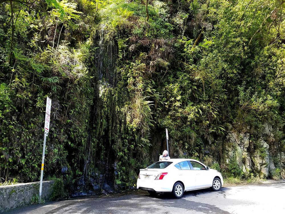 Waterfall, Hana Hwy, Maui HI