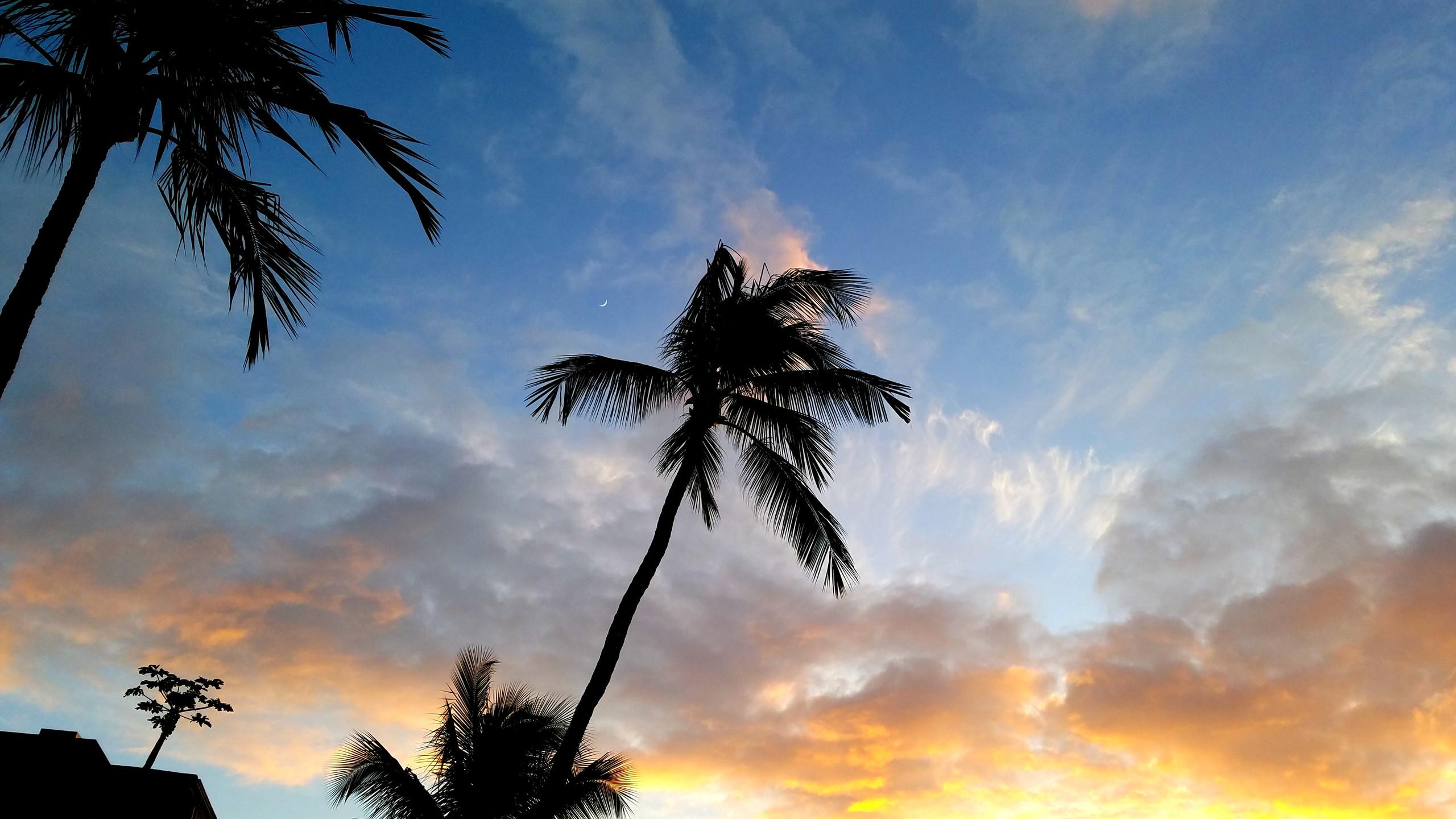 Hale Mahina Condos, West Maui HI