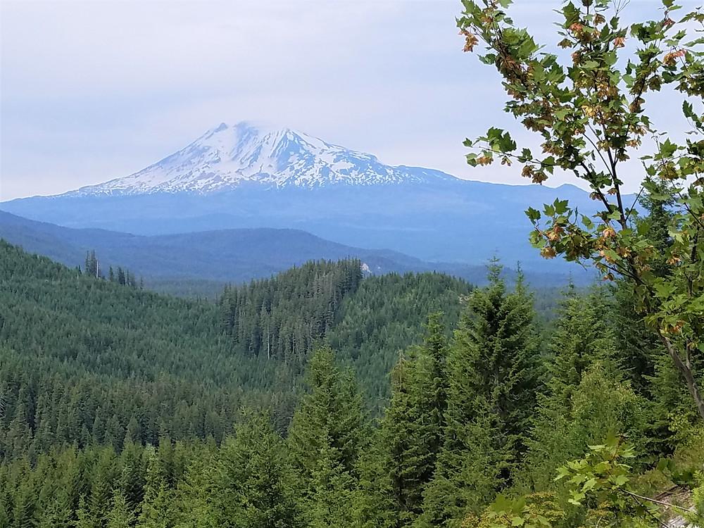Mt. Adams, Klickitat , WA