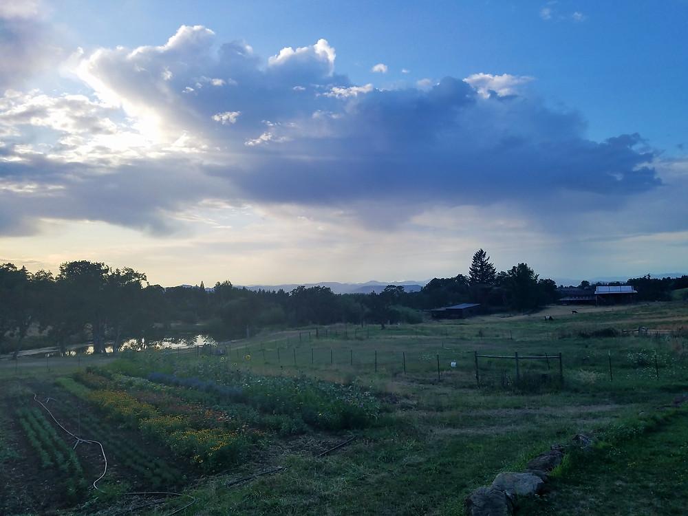 Gardens, pond, pastures and barns of Dunbar Farms