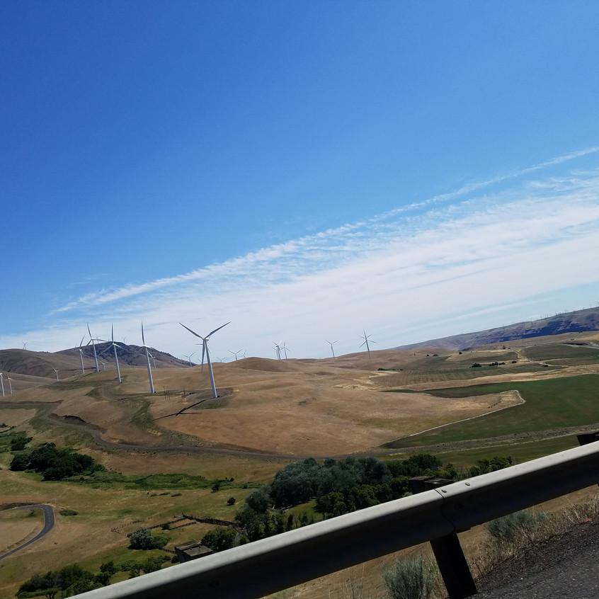 Maryhill Windmills
