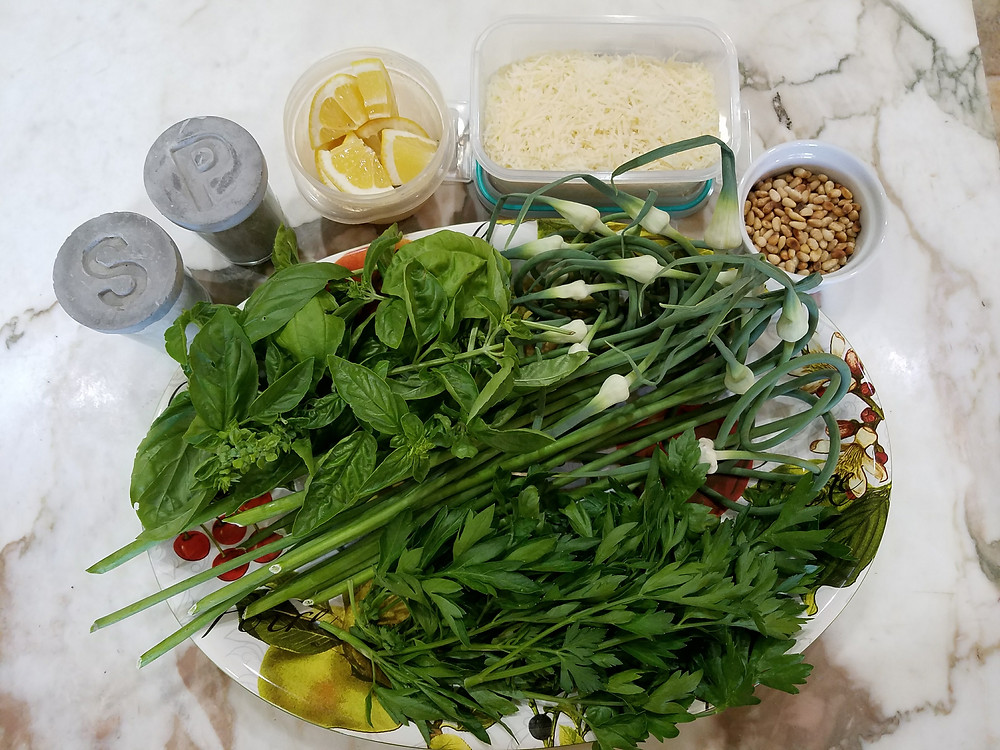 Garlic Scape Pesto Ingredients