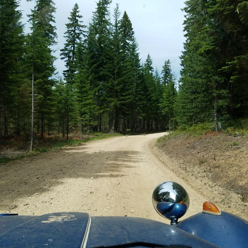 Backwoods Buggy Ride
