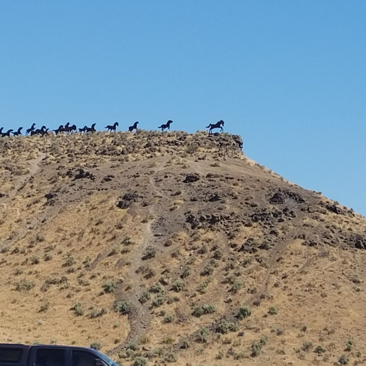 Wild Horses Viewpoint