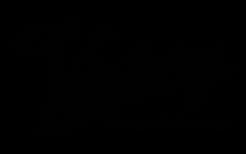 VGD_logo_colour_nobg_small.png