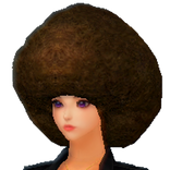 Afro Hair.png