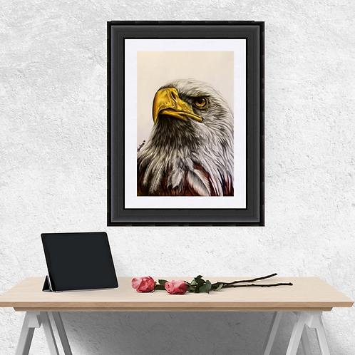 Bald Eagle  Original Drawing