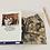 Thumbnail: Snow Leopard Art Card, Wildlife Art Card