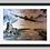 Thumbnail: Below Radar, Lancaster Bomber Fine Art Print