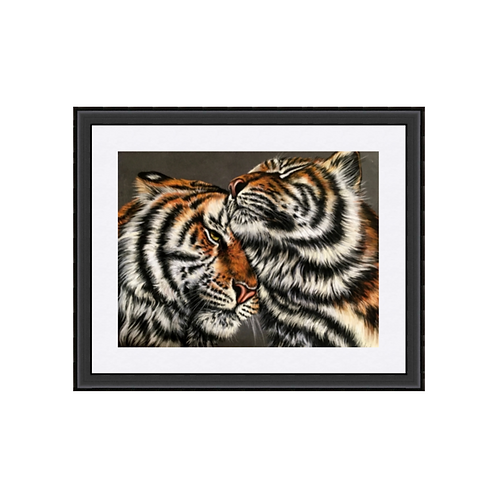 Two Tigers Drawing Fine Art Print