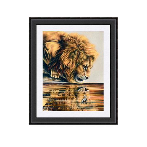 Male Lion Reflections Art Poster