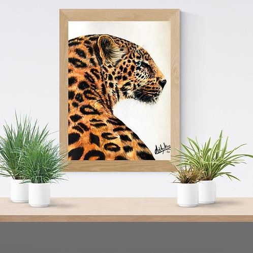 Jaguar Drawing Fine Art Print