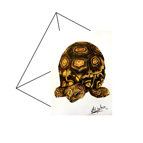 Tortoise Fine Art Card Blank