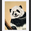 Thumbnail: Panda Cub Original Drawing