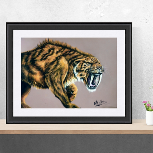Sabre Tooth Tiger  Original Drawing