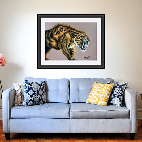 Sabre Tooth Tiger Drawing Fine Art Print