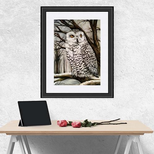 Snowy Owl Original Drawing