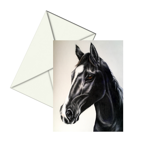 Black Stallion Fine Art Card Blank