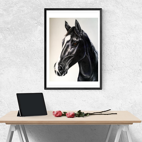 Black Stallion Original Drawing