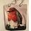 Thumbnail: Robin Redbreast Rope Tote Bag