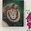 Thumbnail: Lion Original Oil Painting