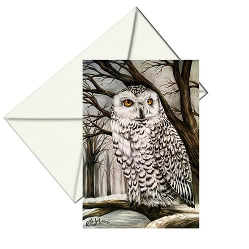 Snowy Owl Drawing Fine Art Card Blank