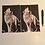 Thumbnail: Howling Arctic Wolf A5 Lined Notebook