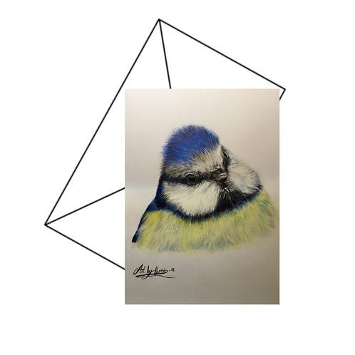 Blue Tit Drawing Fine Art Card Blank