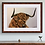 Thumbnail: Highland Cow  Original Drawing