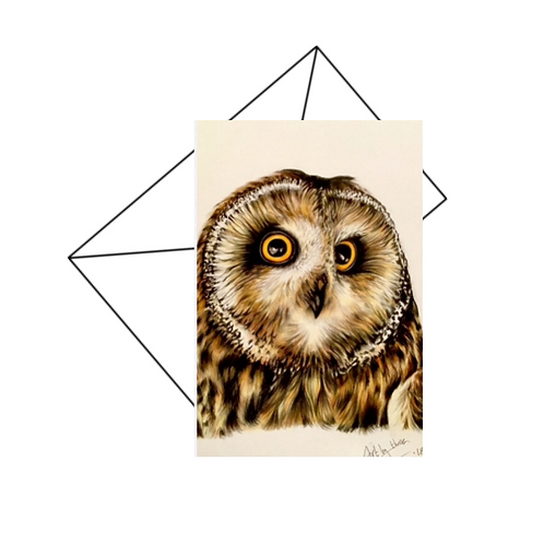 Owl Card Blank