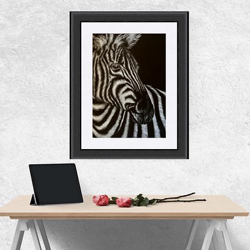 Zebra Portrait Fine Art Print