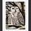 Thumbnail: Snowy Owl Original Drawing