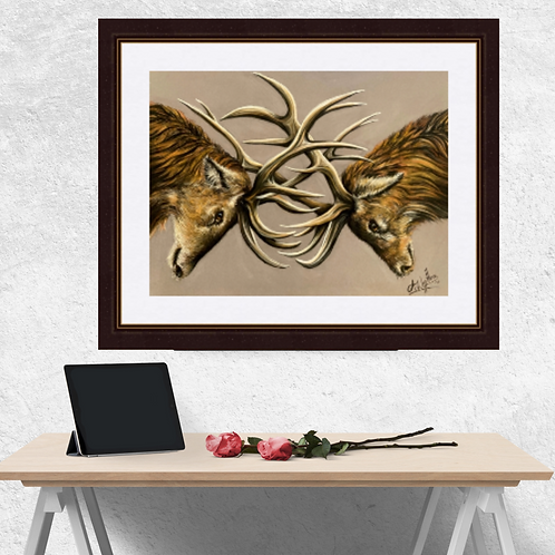 Stags Locking Horns Drawing Fine Art Print